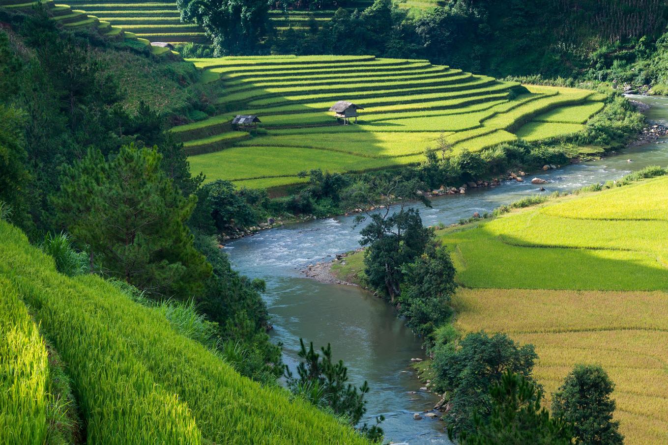 DKSH berichtet über Fortschritte im Bereich Nachhaltigkeit